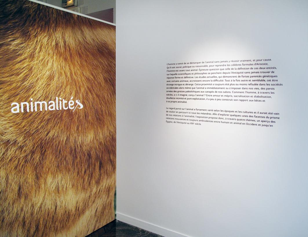 animalités Sextant Creative